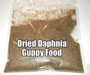 Dried Daphnia Fish Tank Food FREE SHIPPING