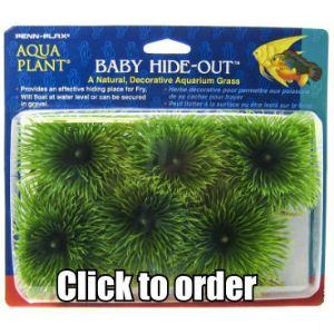 A natural Decorative Aquarium Grass for guppies